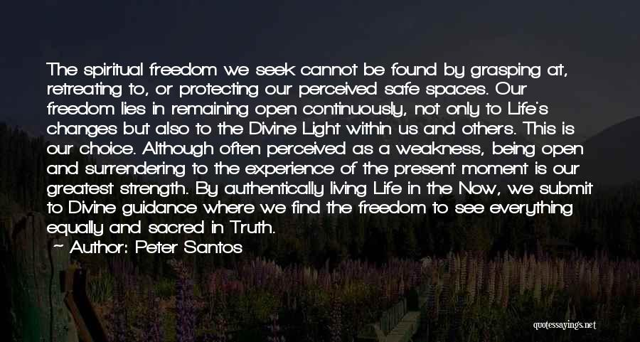 Safe Space Quotes By Peter Santos