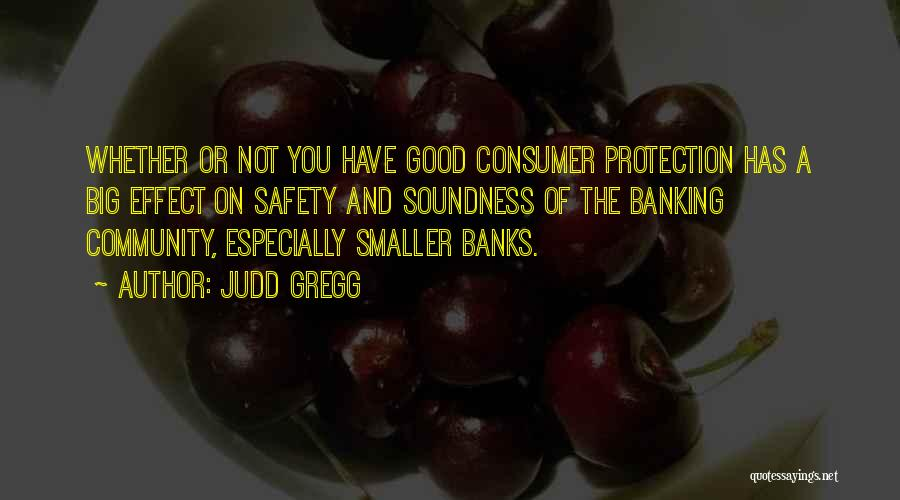 Safety And Protection Quotes By Judd Gregg