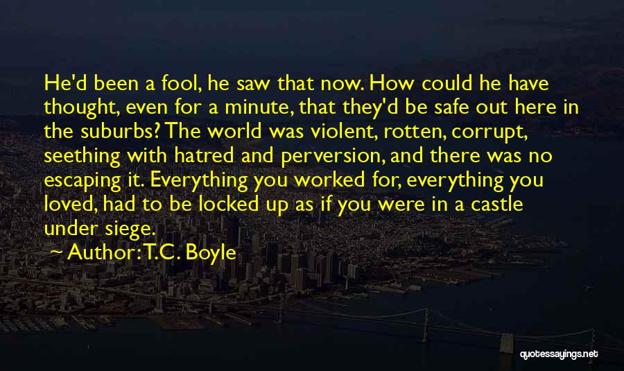 Safety And Protection Quotes By T.C. Boyle