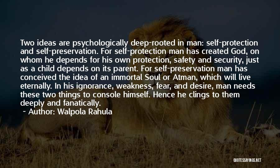 Safety And Protection Quotes By Walpola Rahula