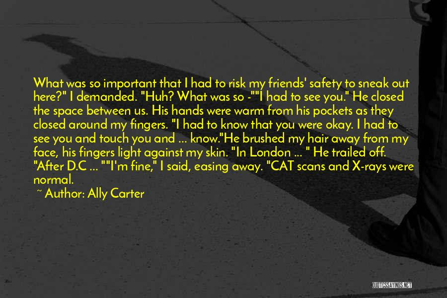 Safety And Risk Quotes By Ally Carter