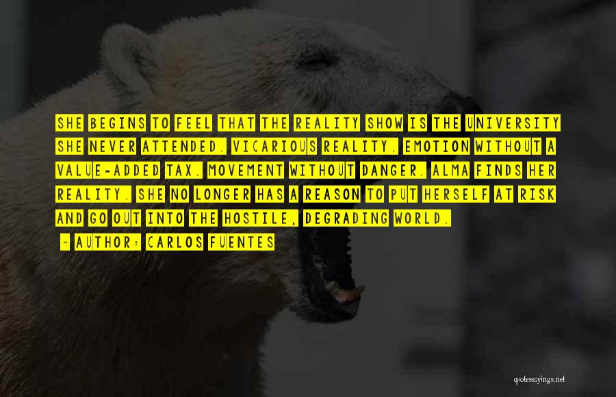 Safety And Risk Quotes By Carlos Fuentes