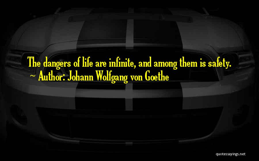 Safety And Risk Quotes By Johann Wolfgang Von Goethe