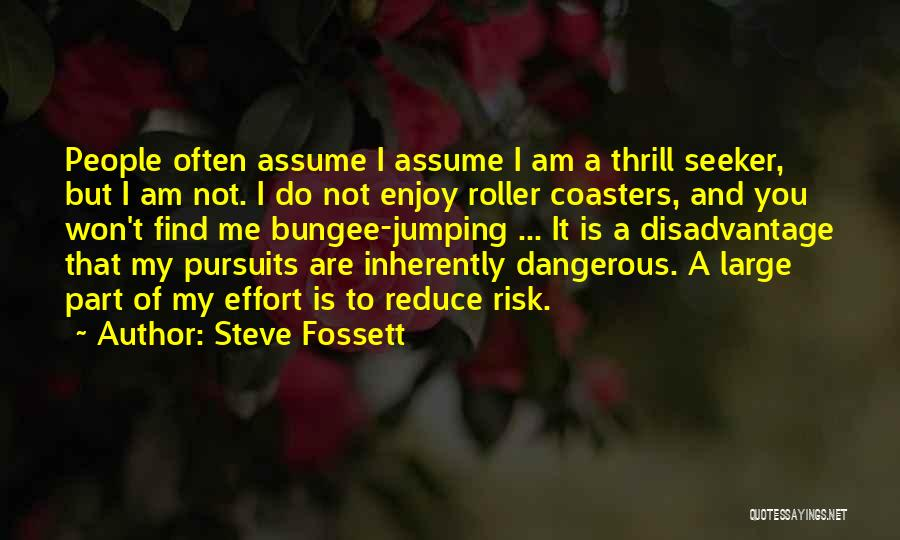 Safety And Risk Quotes By Steve Fossett