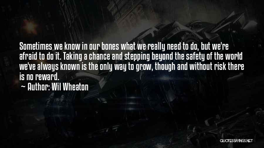 Safety And Risk Quotes By Wil Wheaton