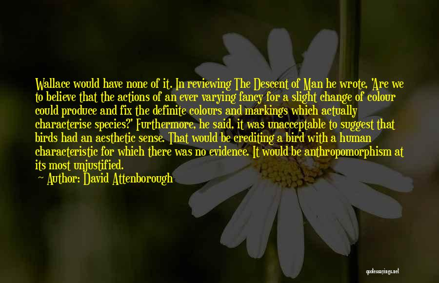 Said No Man Ever Quotes By David Attenborough