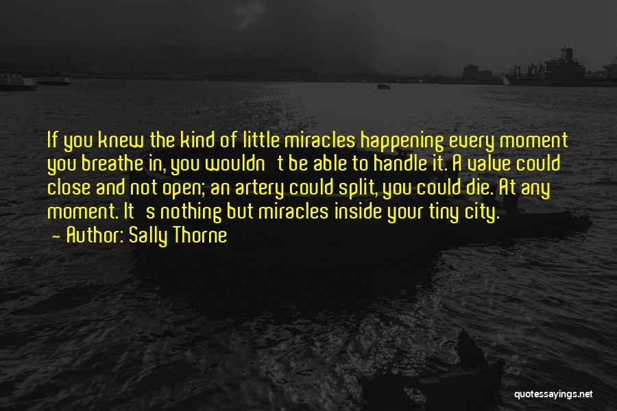 Sally Thorne Quotes 2108014