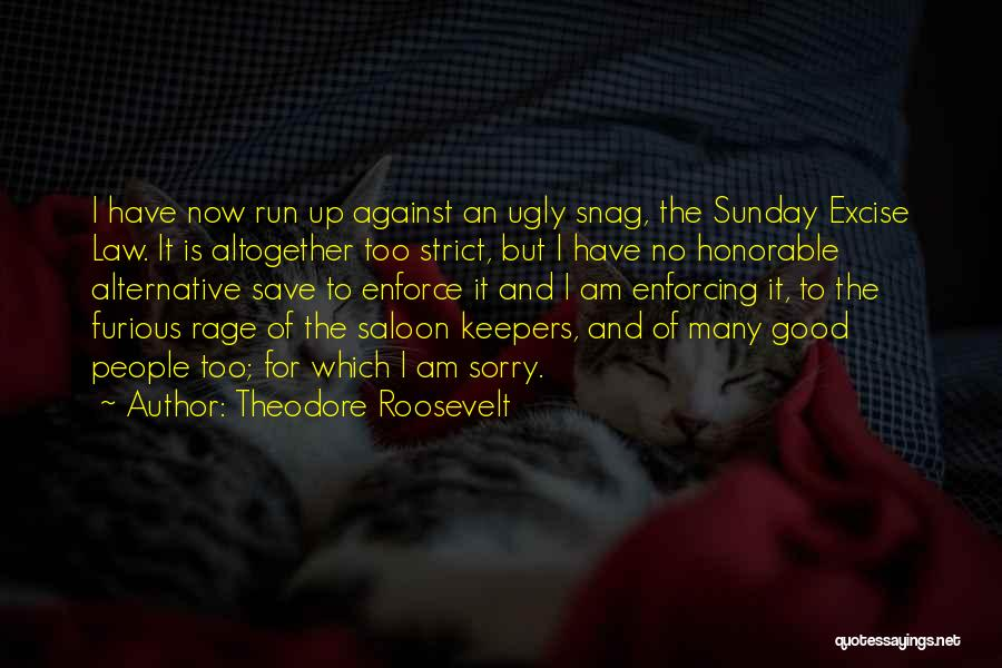 Saloon Quotes By Theodore Roosevelt