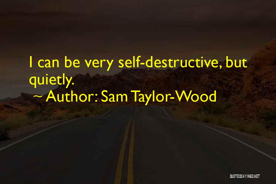Sam Taylor-Wood Quotes 1340783