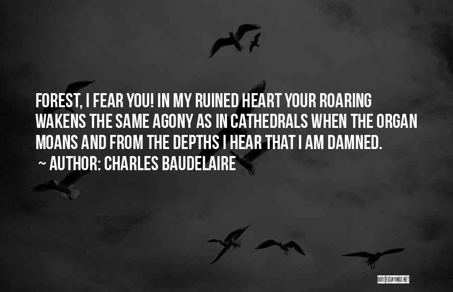 Same Heart As You Quotes By Charles Baudelaire