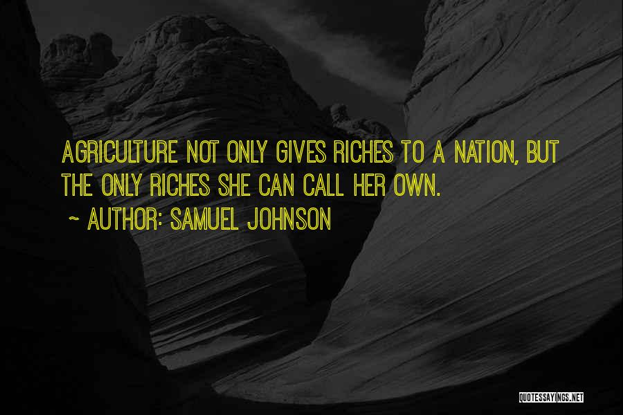 Samuel Johnson Quotes 984688
