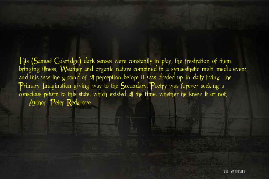 Samuel Taylor Coleridge Imagination Quotes By Peter Redgrove