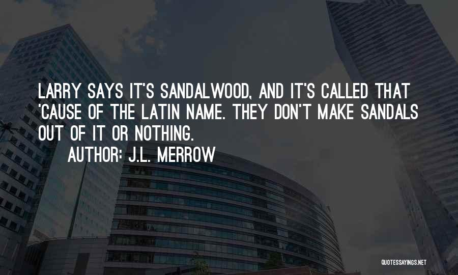Sandals Quotes By J.L. Merrow