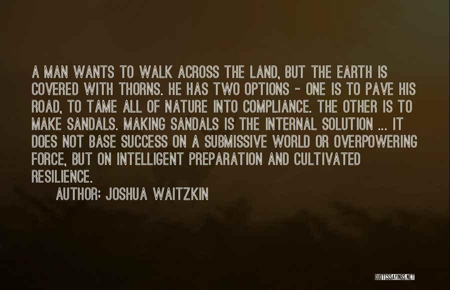 Sandals Quotes By Joshua Waitzkin