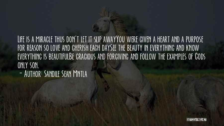 Sandile Sean Mntla Quotes 1031606