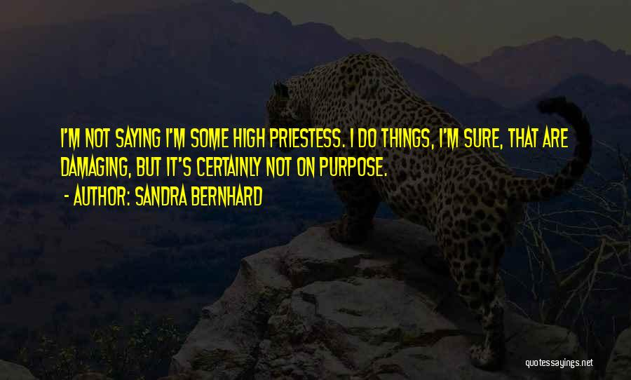 Sandra Bernhard Quotes 1695283