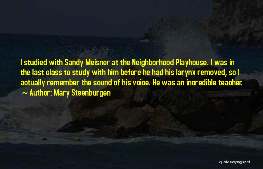 Sandy Meisner Quotes By Mary Steenburgen
