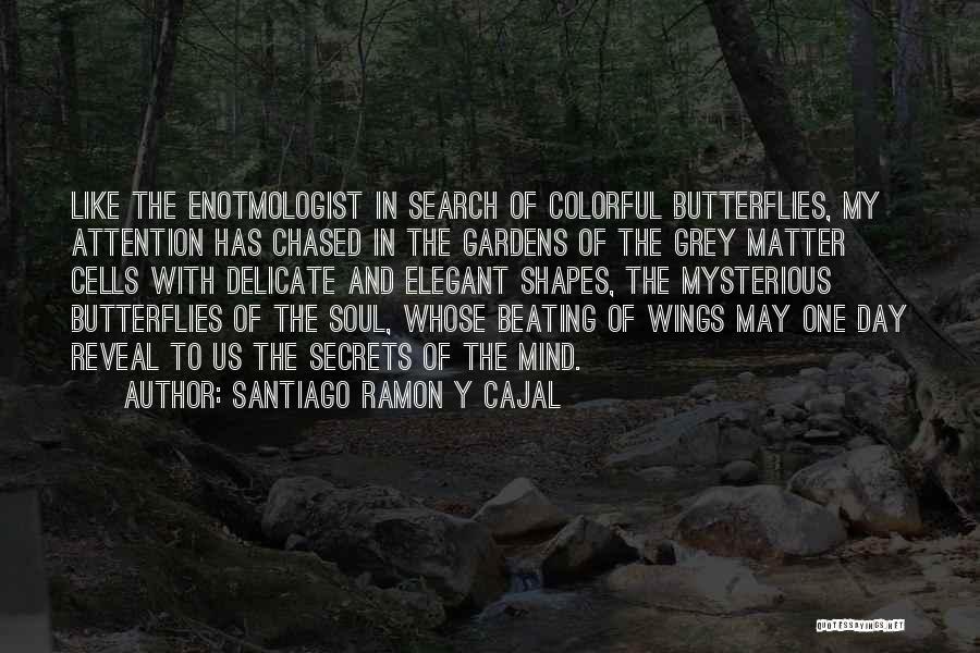 Santiago Ramon Y Cajal Quotes 183488
