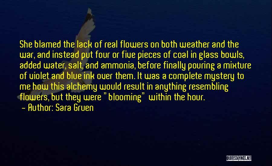 Sara Gruen Quotes 1925097