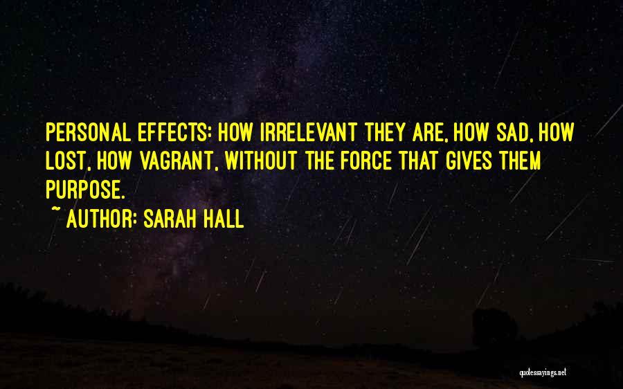 Sarah Hall Quotes 1662441