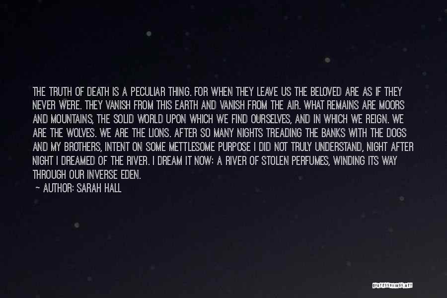 Sarah Hall Quotes 200038