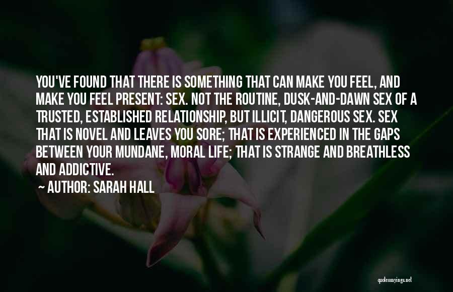Sarah Hall Quotes 2096772