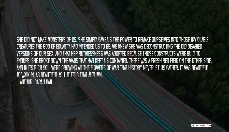 Sarah Hall Quotes 240748