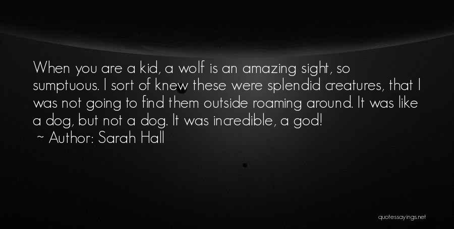 Sarah Hall Quotes 545838