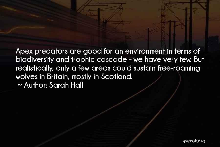 Sarah Hall Quotes 613762