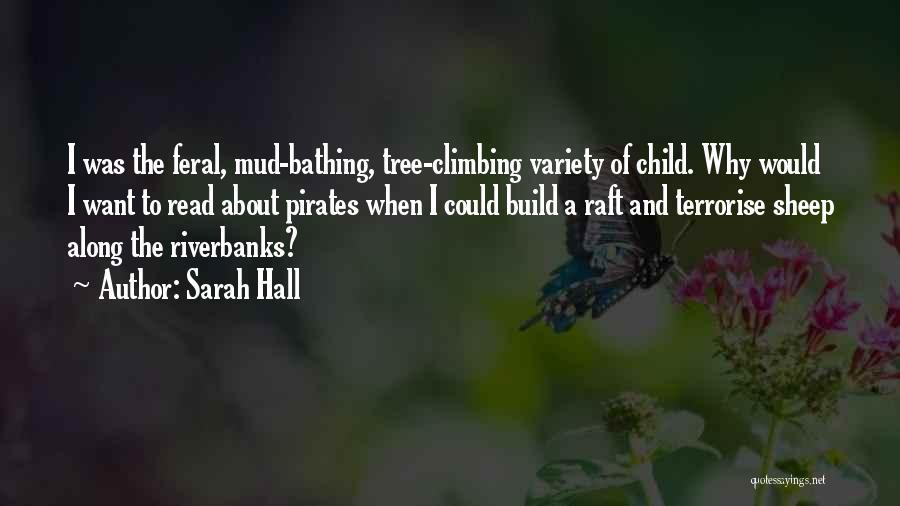 Sarah Hall Quotes 958370