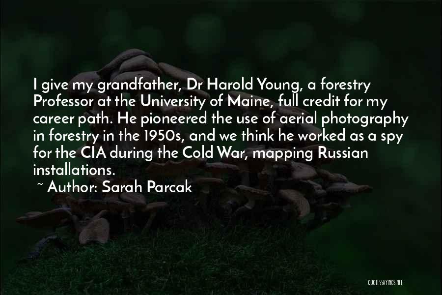 Sarah Parcak Quotes 1884017
