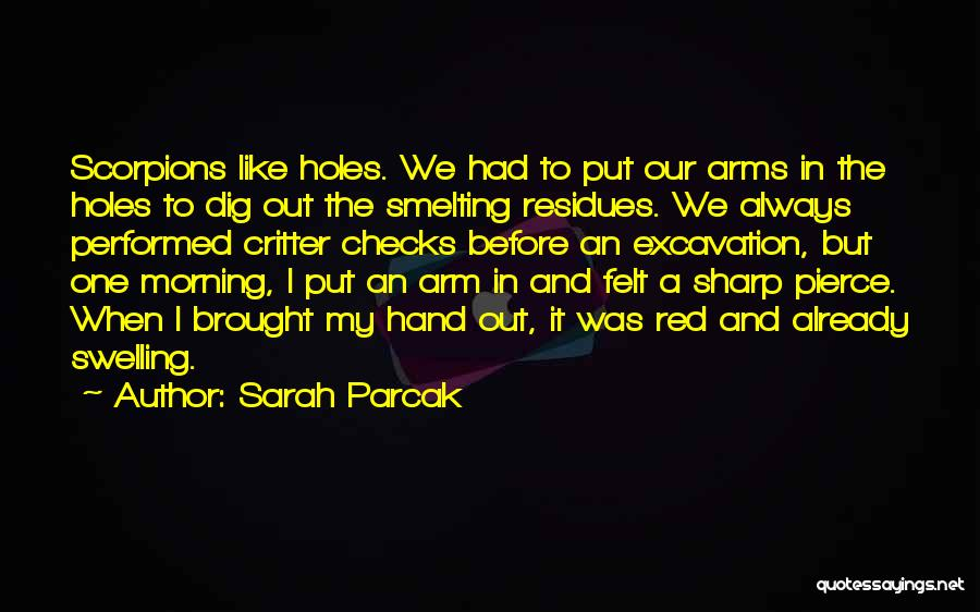 Sarah Parcak Quotes 573374