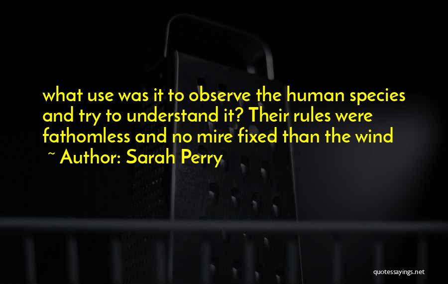 Sarah Perry Quotes 116561
