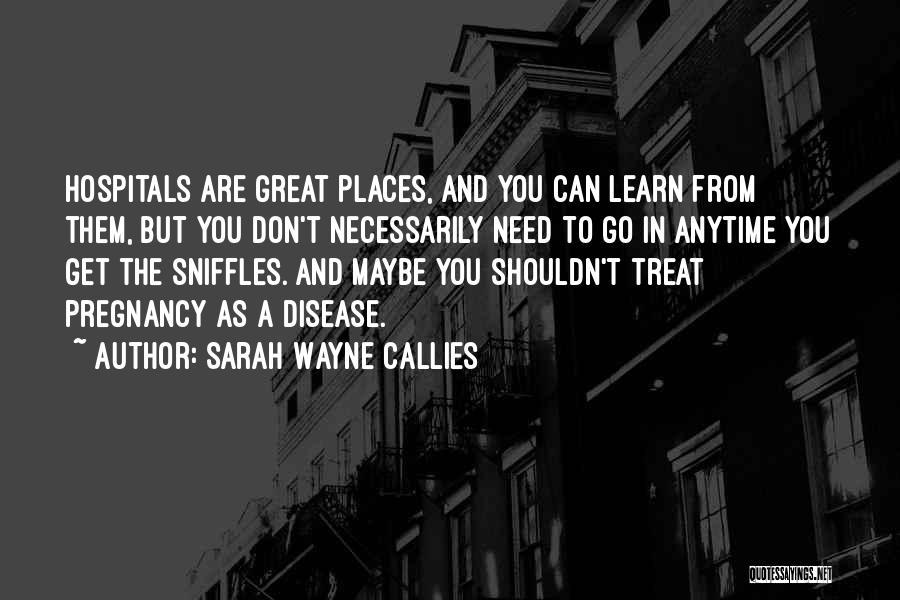 Sarah Wayne Callies Quotes 1357733
