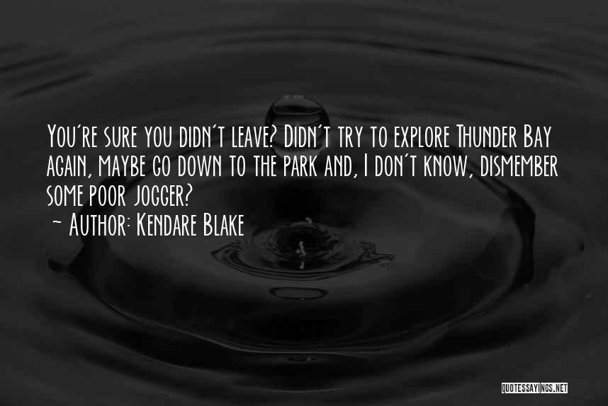 Sarcasm At Its Best Quotes By Kendare Blake