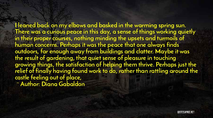 Satisfaction In Helping Others Quotes By Diana Gabaldon