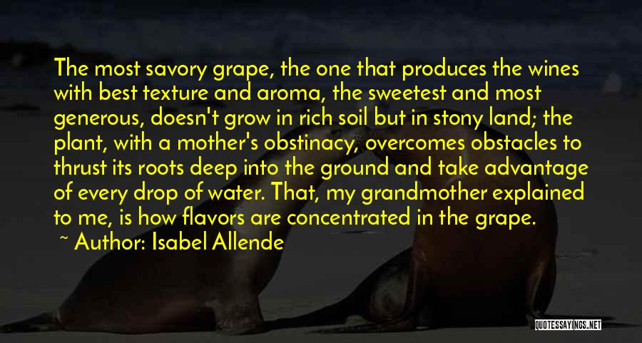 Savory Quotes By Isabel Allende