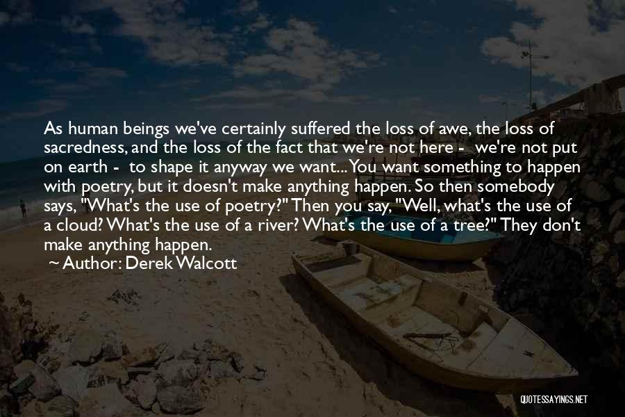 Say Anything You Want Quotes By Derek Walcott
