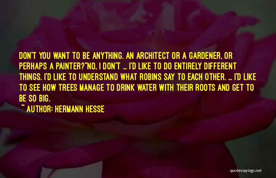 Say Anything You Want Quotes By Hermann Hesse