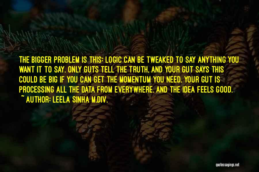 Say Anything You Want Quotes By Leela Sinha M.Div.