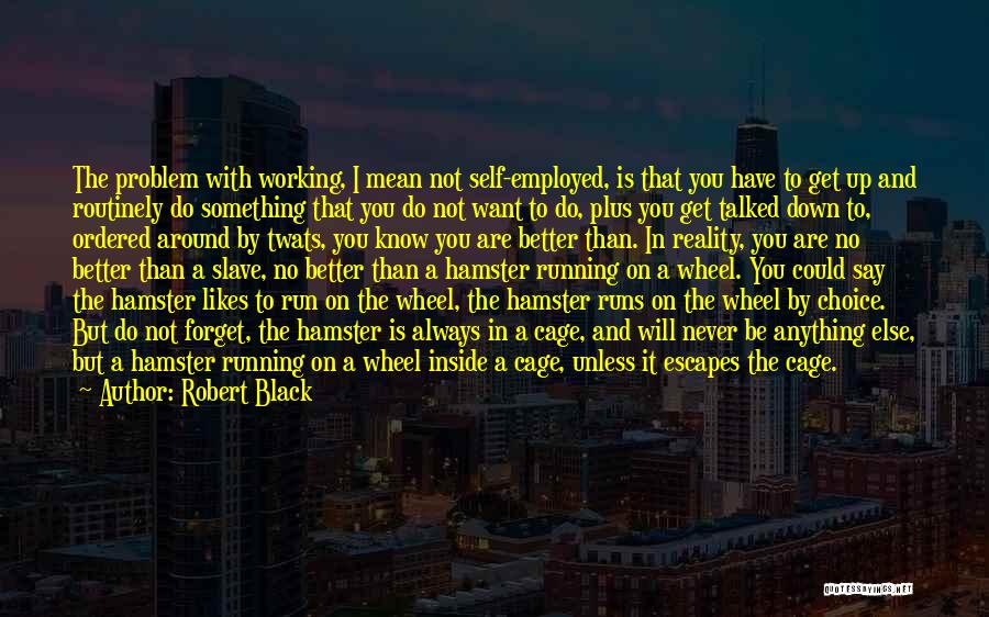 Say Anything You Want Quotes By Robert Black