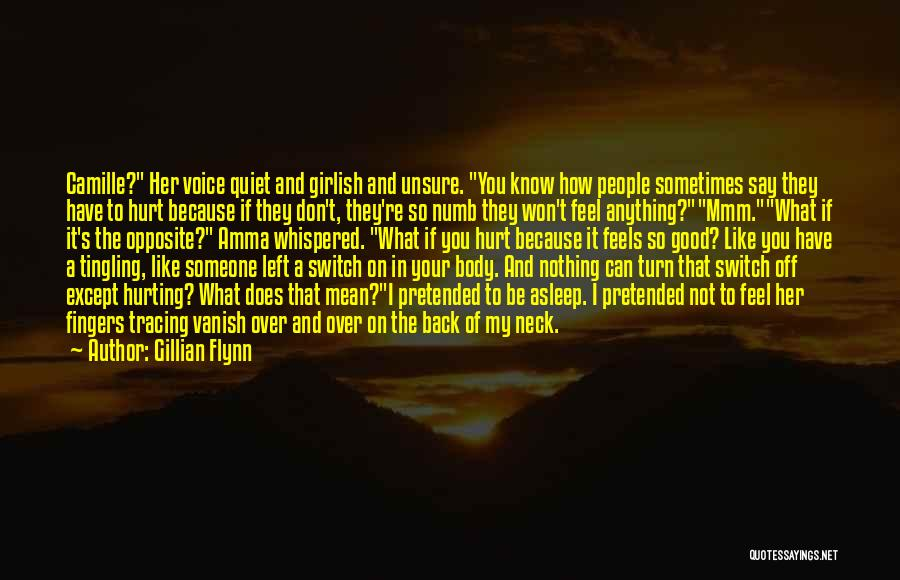 Say What You Feel And Mean What You Say Quotes By Gillian Flynn