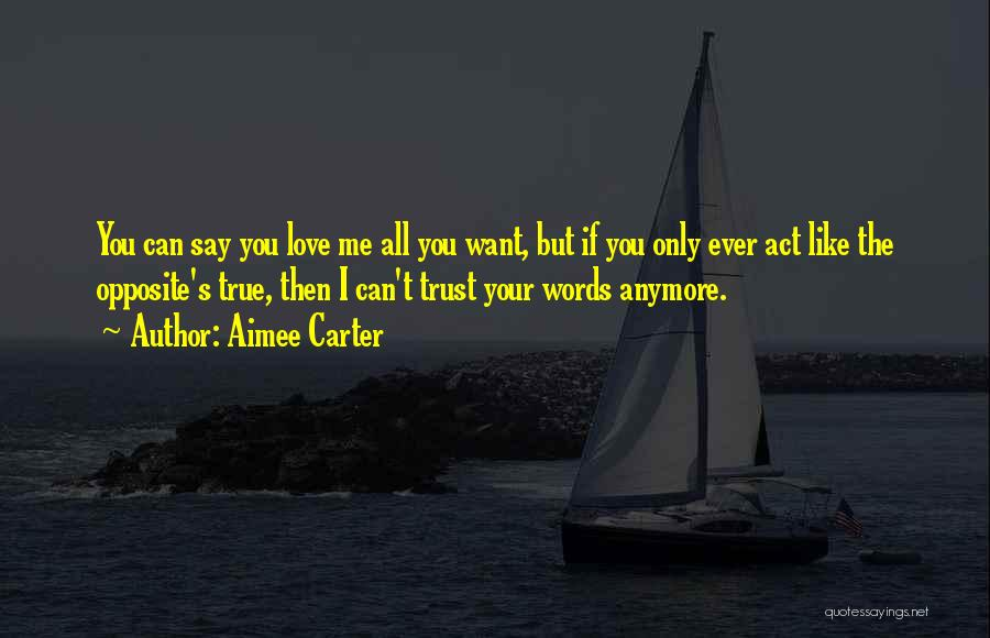 Say You Love Me Quotes By Aimee Carter