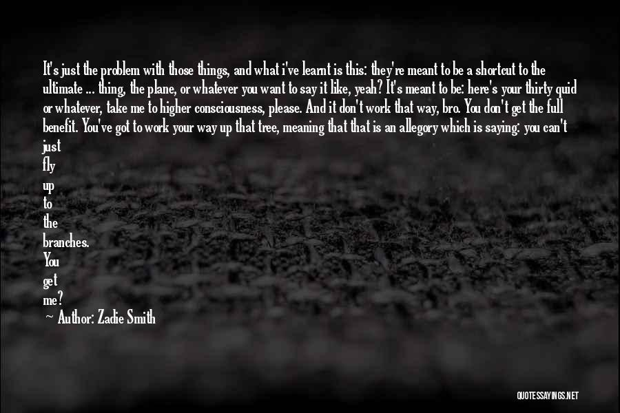 Saying Sorry And Not Meaning It Quotes By Zadie Smith