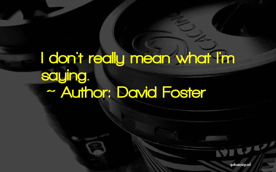Saying Things We Don't Mean Quotes By David Foster