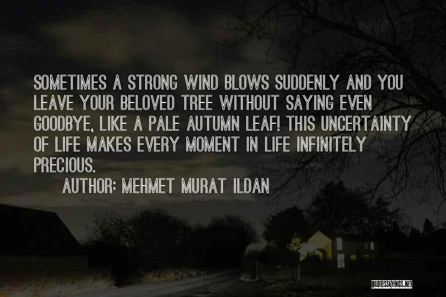 Saying You're Okay When Your Not Quotes By Mehmet Murat Ildan