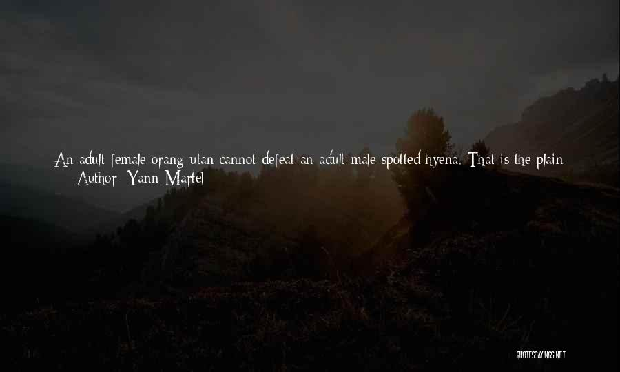 Scales And Weight Quotes By Yann Martel