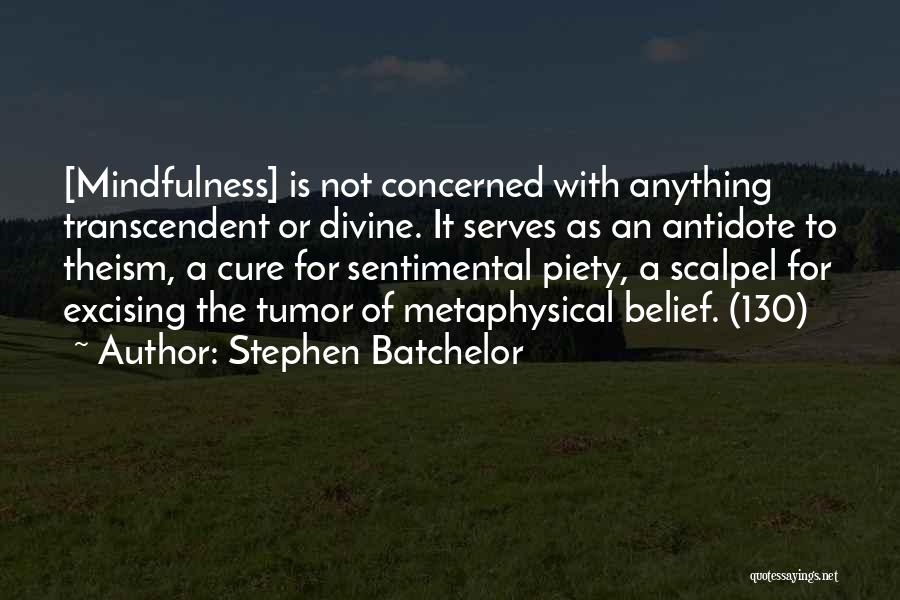 Scalpel Quotes By Stephen Batchelor