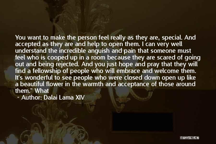 Scared To Like You Quotes By Dalai Lama XIV