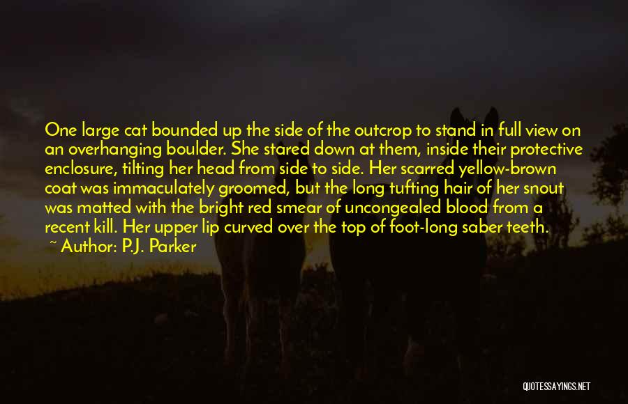 Scarred Quotes By P.J. Parker